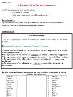 Vocabulaire Sequence Sur Les Synonymes Locazil