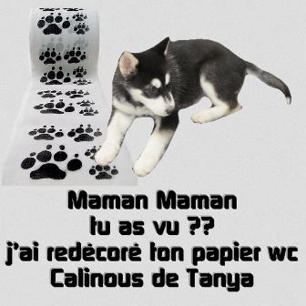 Tanya2