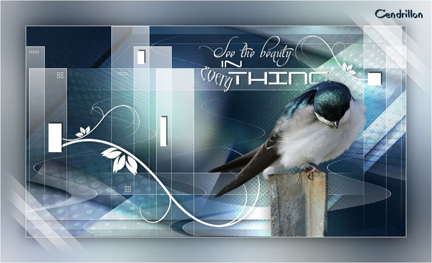 See the beauty... - Noisette