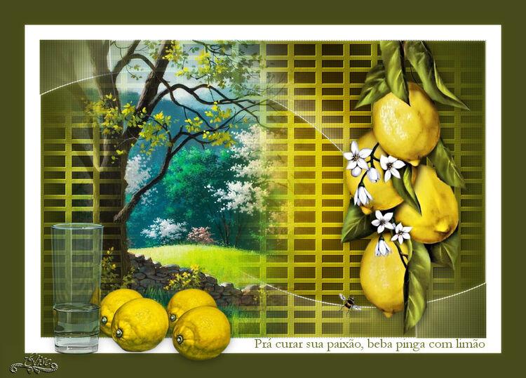 Citrons de Estella Fonseca
