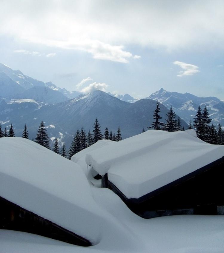 mon *Paradis Blanc*... N°1 (Photos Janvier 2010 )