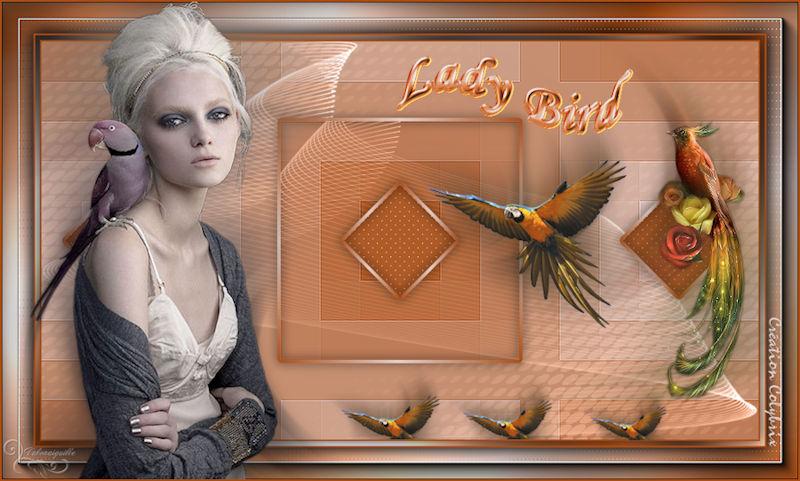 *** Lady Bird ***