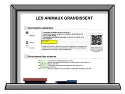 LES ANIMAUX GRANDISSENT