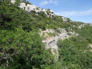 Remontée de l'autre côté du vallon de la Castelette