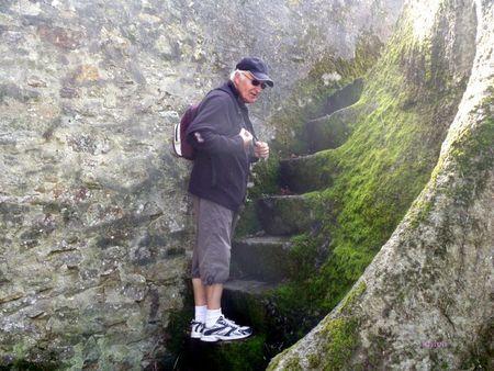 la baie de Douarnenez (71)