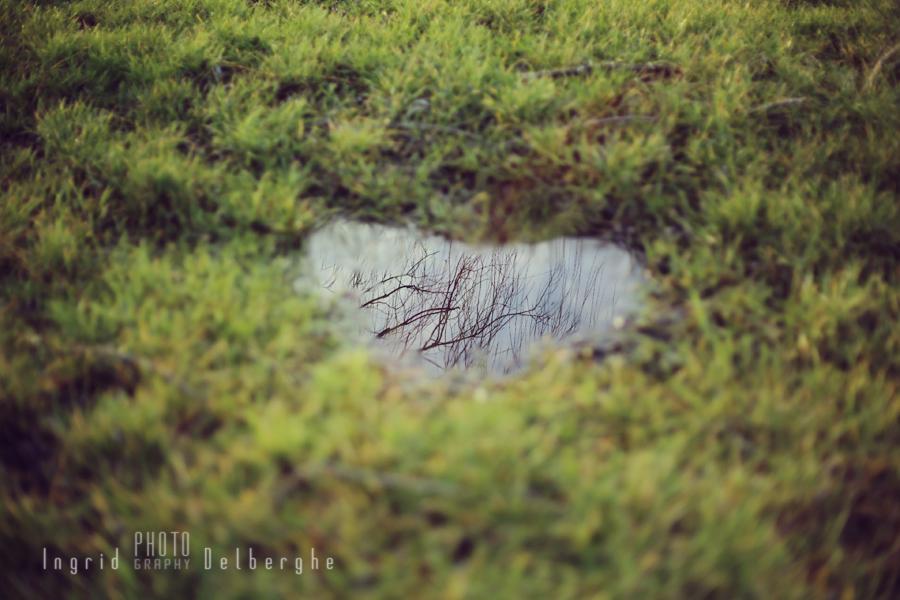 Flaque d'eau en forme de coeur, magique