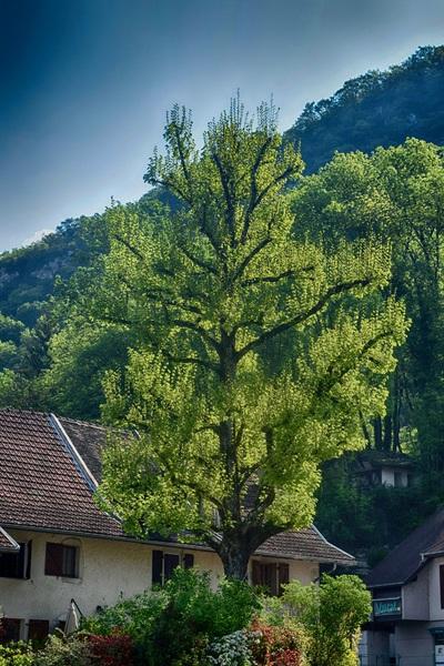 2016.05.03 Commune de Chanaz (Savoie)