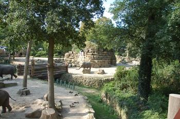 dierenpark emmen d50 117