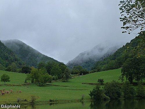 brouillard-vallee-truyere-c.jpg