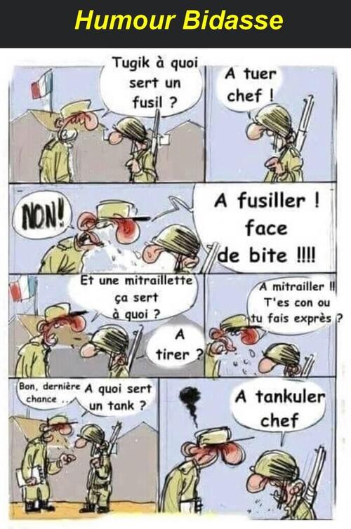 La France qui marche sur la tête . art20.