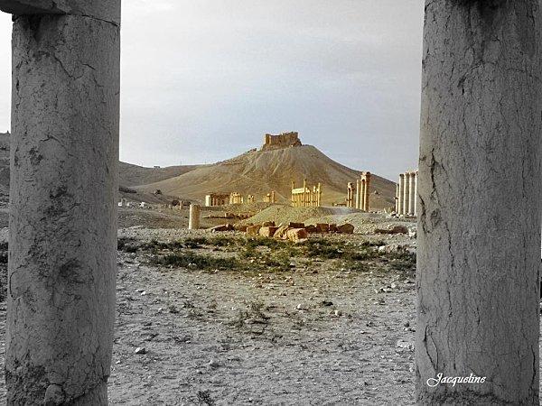 Palmyra-copie-2.jpg