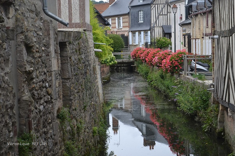 Calvados : été 2018 : Ville de Touques : Le ruisseau des Ouïes