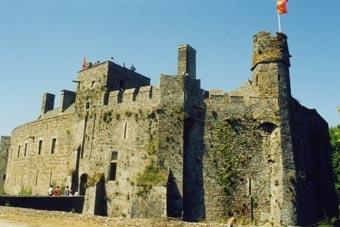 Les oies du Château-fort de Pirou