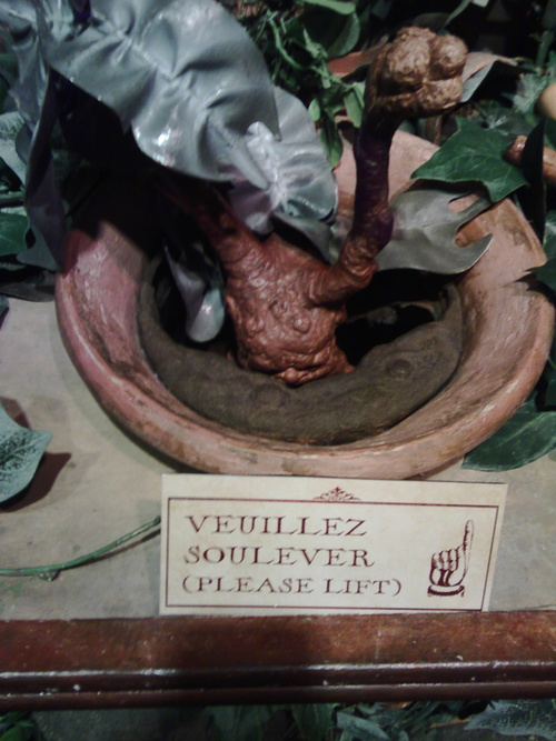L'exposition Harry Potter - 12 avril 2015