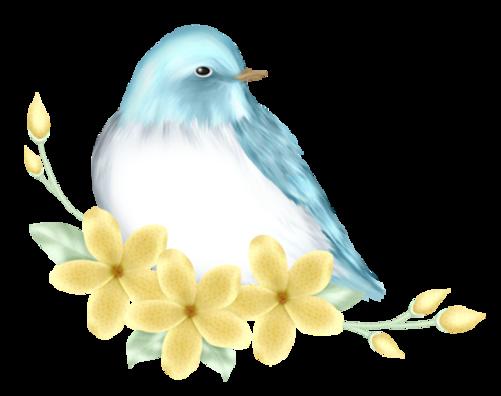 Le repos de l'oiseau