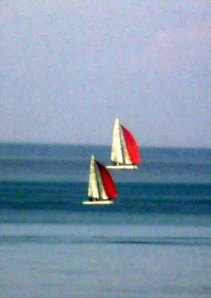 bateau picasa