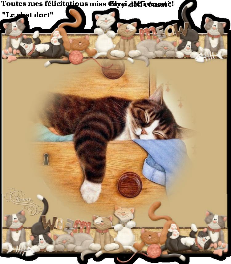 """Vos récompenses au défi """"Le chat dort"""" mes zamours!"""