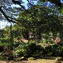 Le parc autour de la Maison d'Habitation - Photo : Yvon (Février 2015)