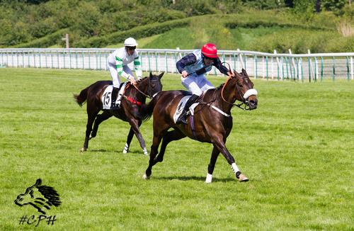 Grand Steeple Chase de Paris