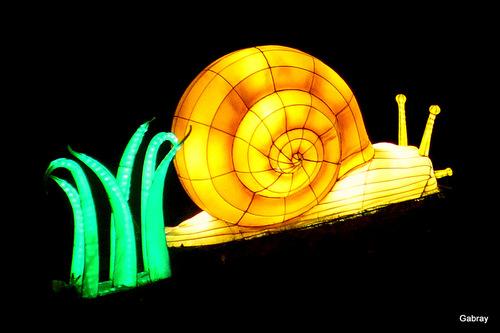 Gaillac 81: le festival des lanternes … n 1