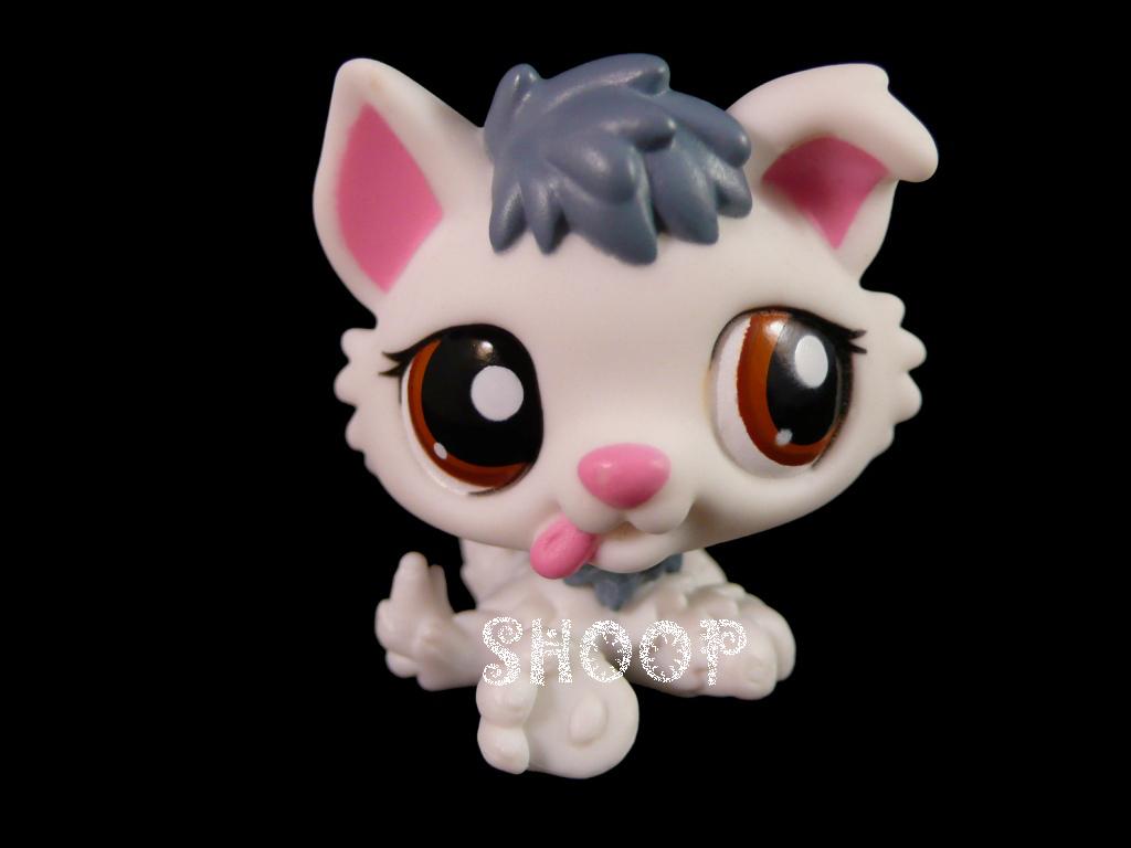 LPS 2439