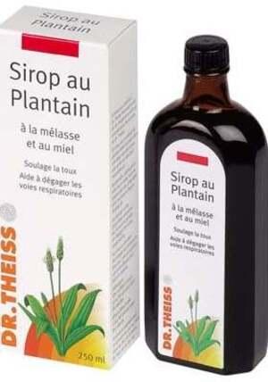 Vertus médicinales des plantes sauvages : Plantains