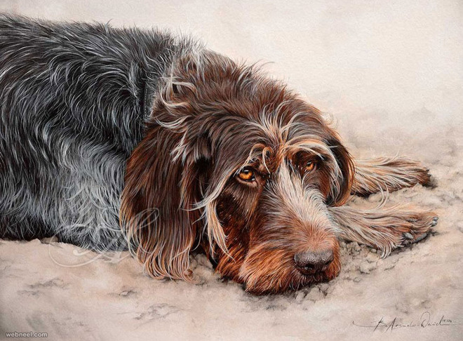 watercolor dog paintings