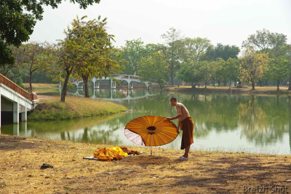 Moine solitaire, parc historique d'Ayutthaya