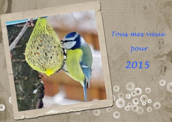 Tous mes vœux pour 2015...