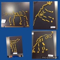 Les paléontologues en herbe