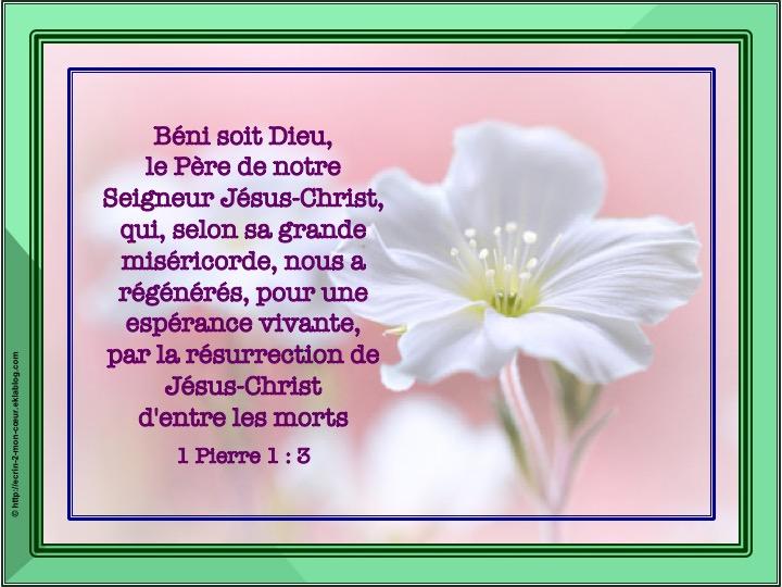 Béni soit Dieu - 1 Pierre 1 : 3