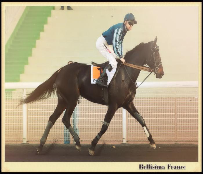 BELLISIMA FRANCE