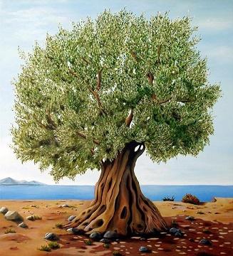 L'olivier ...