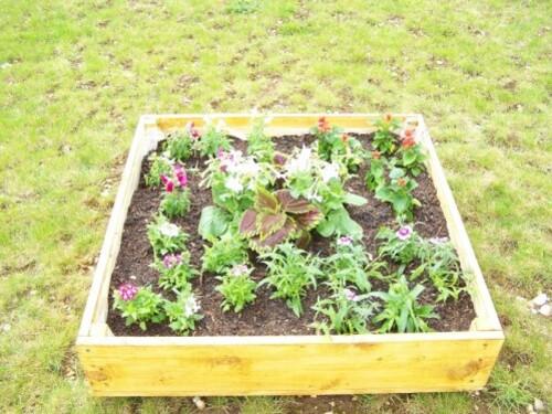 jardin-2012-02.jpg
