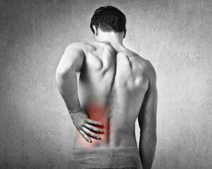 f.info Cellulite et maux de dos : repères