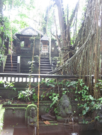 La forêt des singes - Ubud Bali