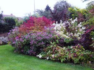La-Muette--Jardin-3---30-08-07.jpg