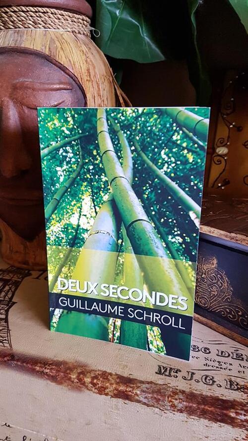 """""""Deux secondes"""" de Guillaume Schroll : un récit qui part dans tous les sens et des scènes vraiment écoeurantes."""
