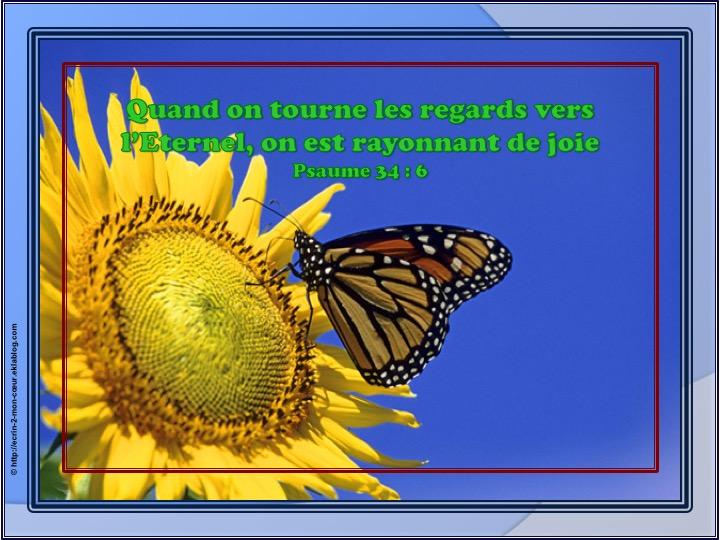 On est rayonnant de joie - Psaumes 34 : 6