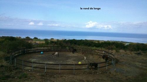 les infrastructures de l'Ile aux Poneys