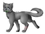 La voix des chats LGDC