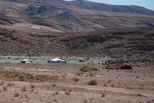 Un petit campement nomade