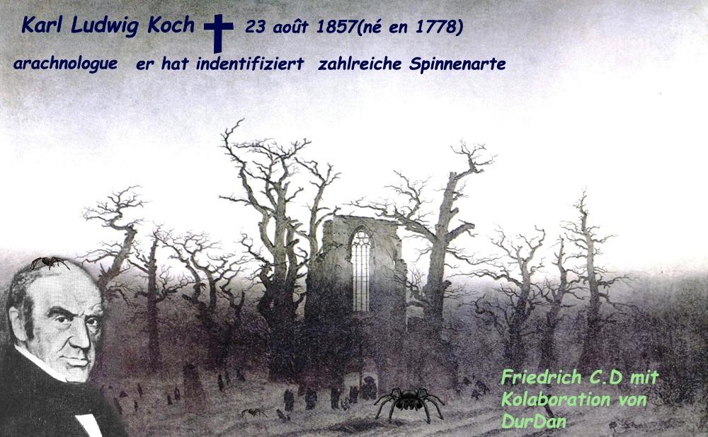 Arachnology/ Karl Ludwig Koch/Nürnberg
