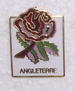 Pin's Angleterre CPM 1991 (2)