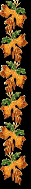 Autumn dividers vertical