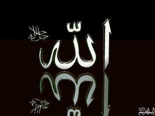 Kilauan Mutiara Hikmah Dari Perkataan Salaful Ummah