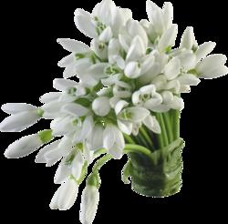 Vase de Fleurs lanches
