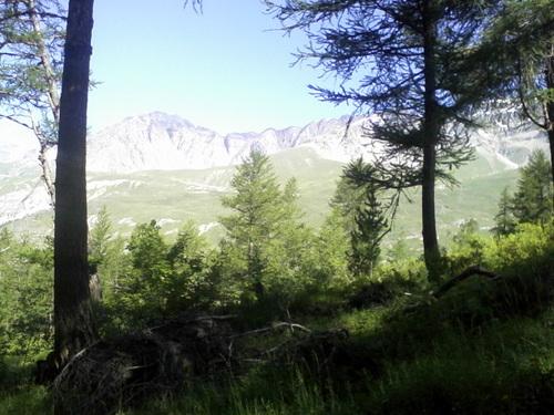 Cenis Tour 2013 : trail ou rando ?