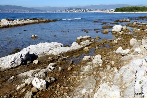 Cannes: île Sainte Marguerite ...
