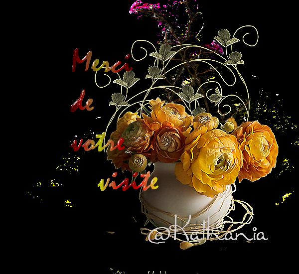 Bouquet : Merci de votre visite